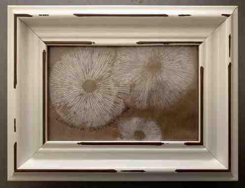 Cheree Charmello Andrews Laccaria octopurpurea spore print