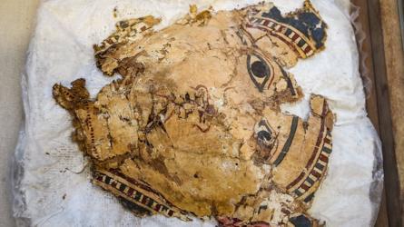 artefact fragments on display in Minya