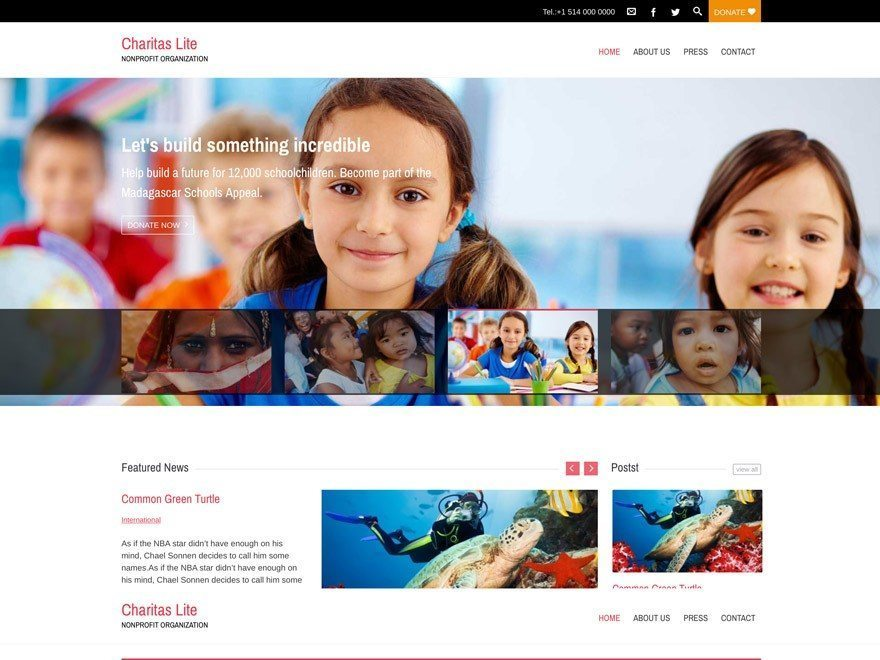 Free Charity WordPress Themes for Nonprofit/NGO/Fundraising oganization
