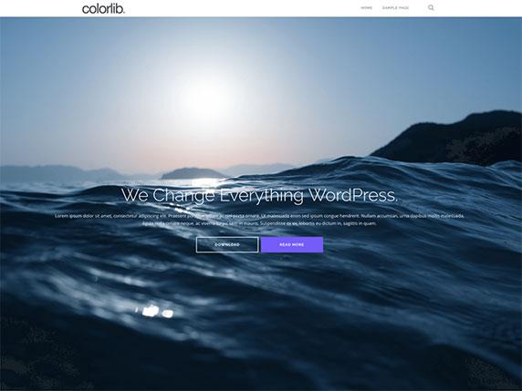 Enlace de demo del gratuito tema Shapely de WordPress