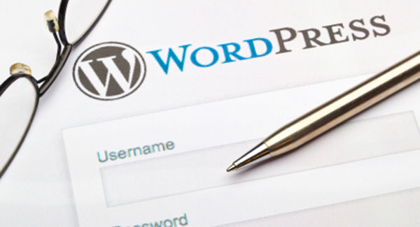 Change WordPress Logo on Login Page