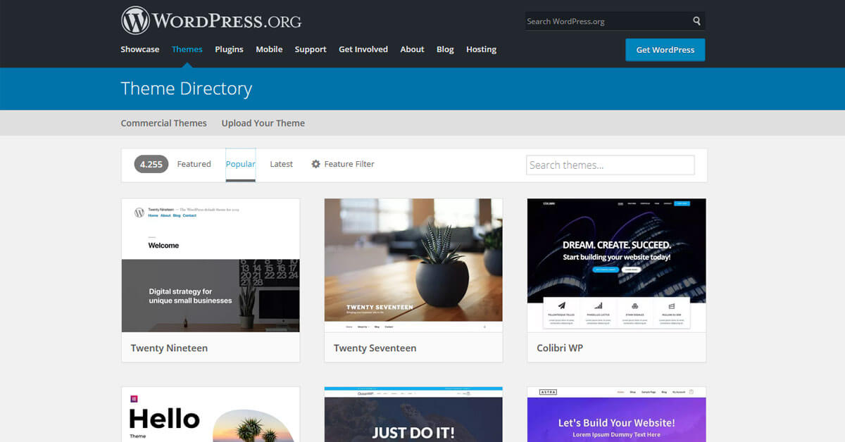 what-is-a-wordpress-theme