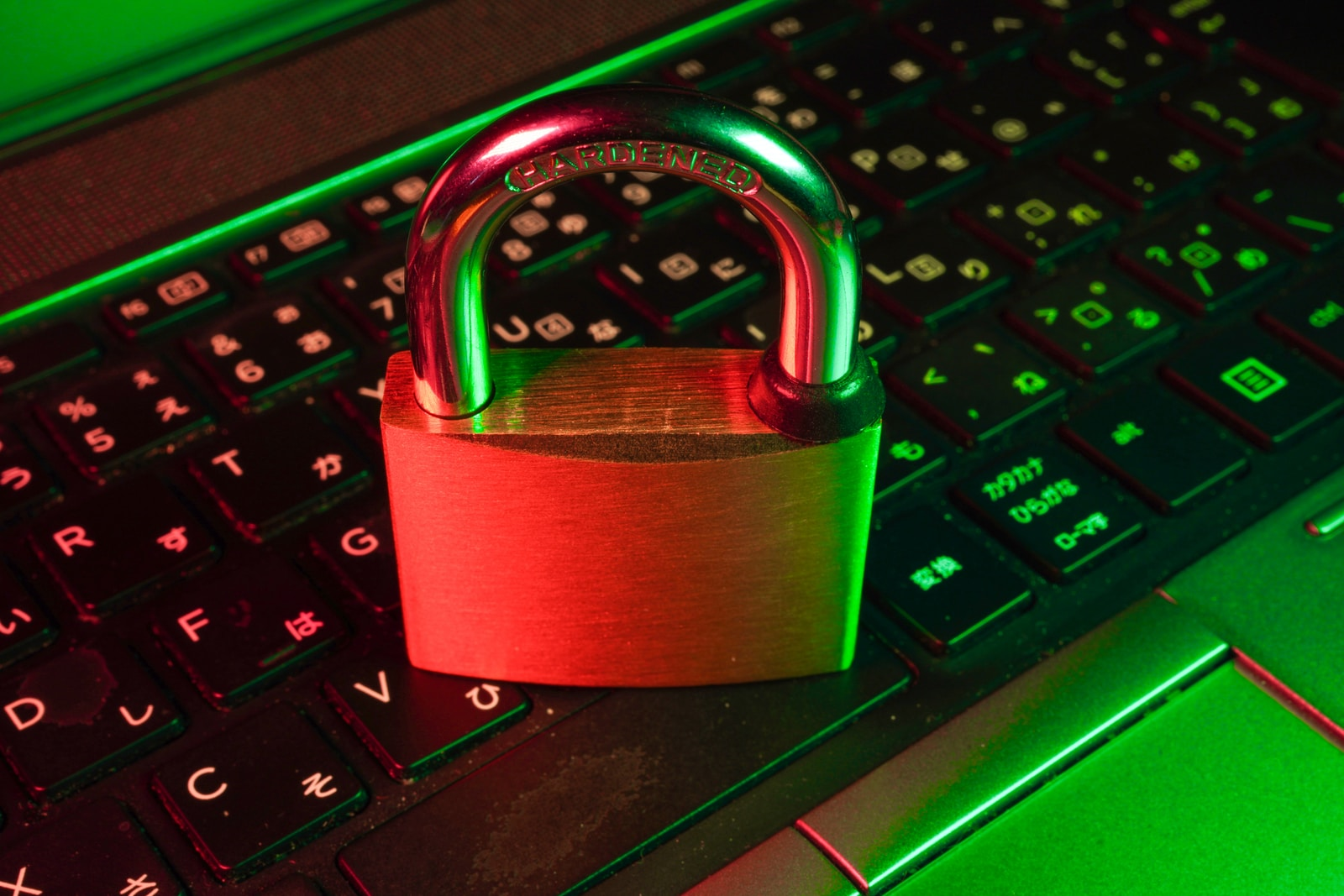 Know about possible WordPress vulnerabilities in advance