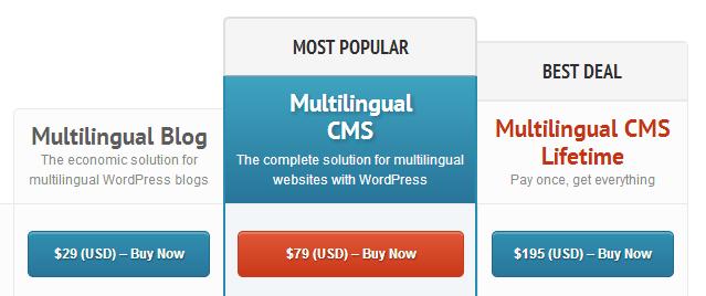translating WordPress websites