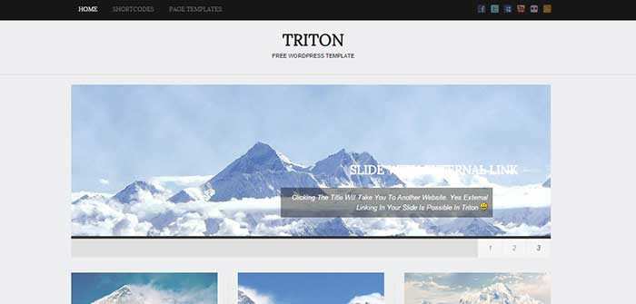 Triton Lite - Blog WordPress Theme