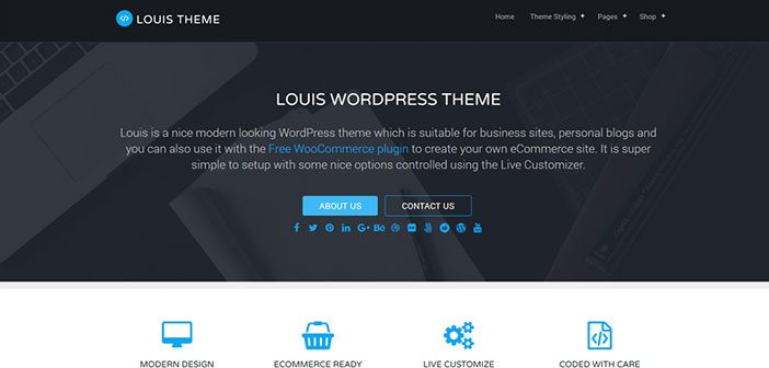 Louis Free Business WordPress Theme