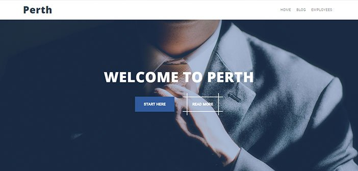 Perth - A Professional Business WordPress Theme