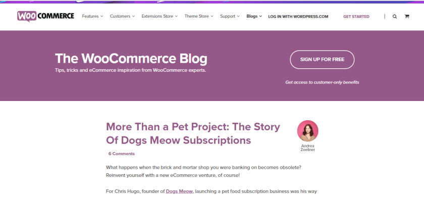 woocommerce- best wordpress blogs