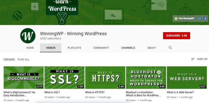 WinningWP YouTube Channel