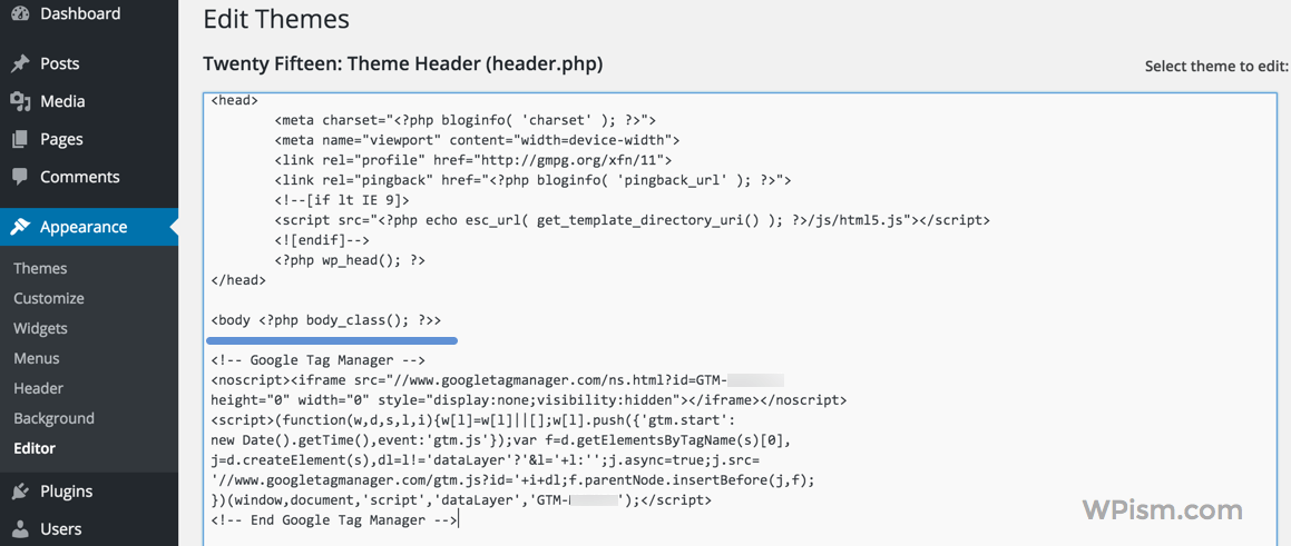 Adding Google Tag Manager to WordPress Header