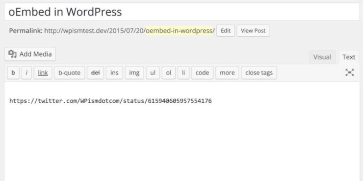 Adding oEmbed in WordPress