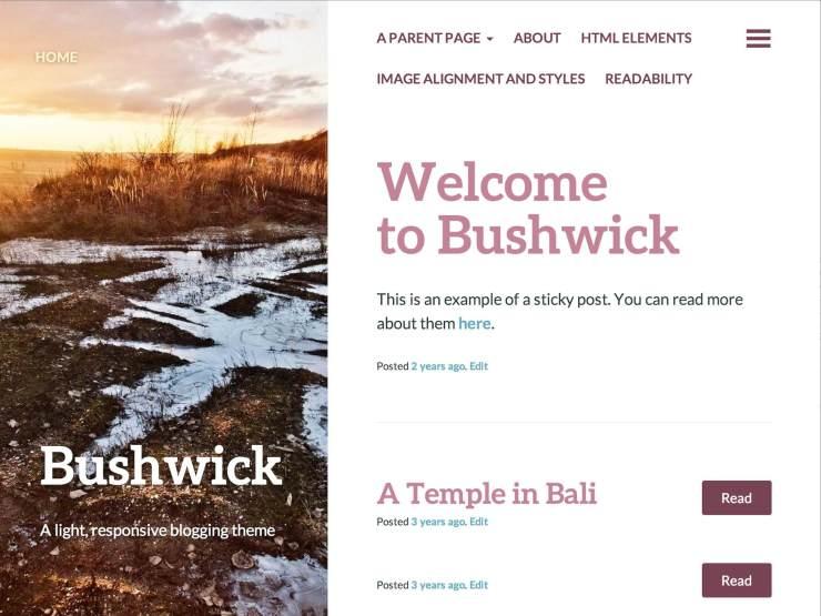 Bushwick Blogging Theme By Automattic Medium Theme