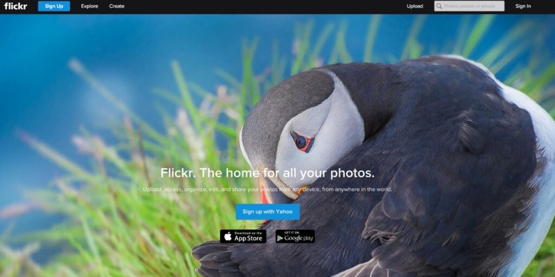 Flickr Photo and Video Sharing Website