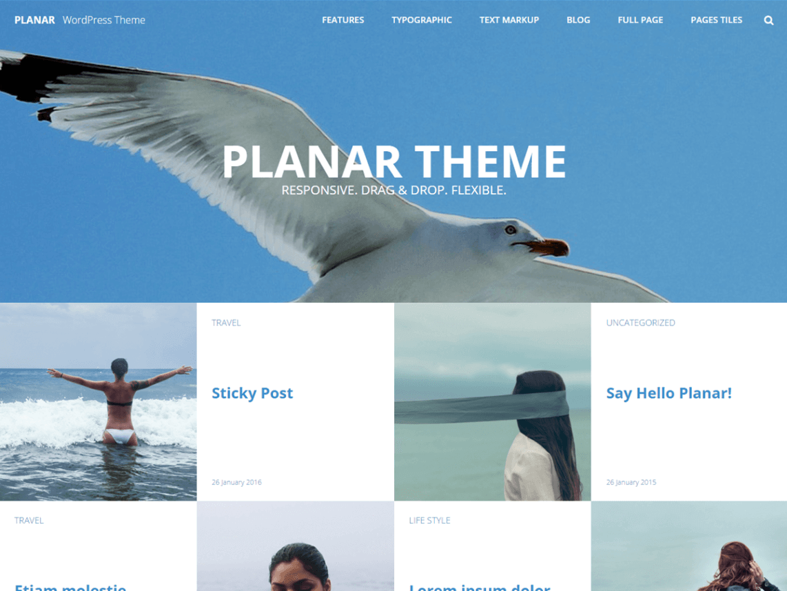 Planar Lite By Dinev Dmitry WordPress Theme