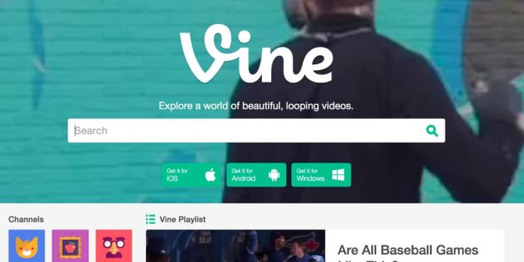 Vine Videos WordPress