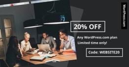 WordPress Coupon Code Website 20
