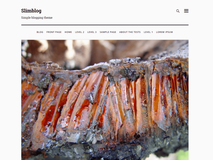 slimblog By fervillz WordPress Theme
