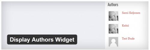 Display Authors Widget