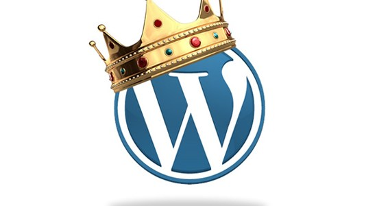WordPress themes fit for a king (Plus 50% off)