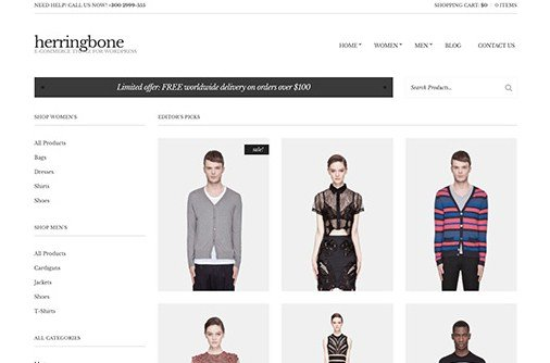 CSS Igniter Herringbone WordPress Theme
