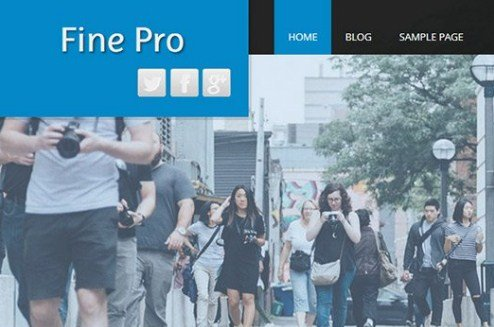 CyberChimps Fine Pro WordPress Theme