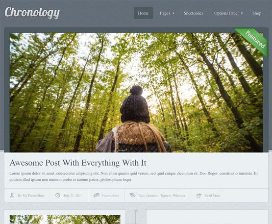 WPLocker-MyThemeShop Chronology WordPress Theme