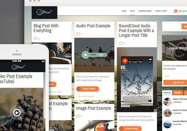Thrive Themes Storied WordPress Theme
