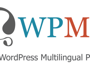 WPLocker-WPML Multilingual CMS WordPress Plugin