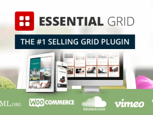 Essential Grid - WordPress Grid Building Solution