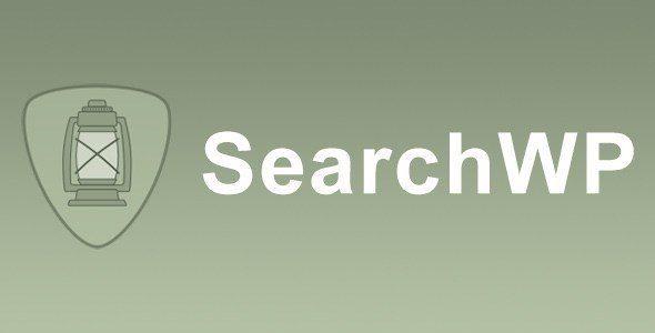 Searchwp - Wpml Integration