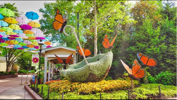 Dollywood Flower and Food Festival