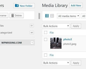 Categorize Media Files In Different Folders - FileBird Lite