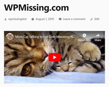 Embed Youtube And Vimeo Video In Responsive Way - REV