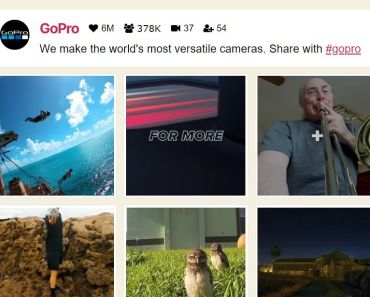Responsive TikTok Feed Gallery Plugin For WordPress