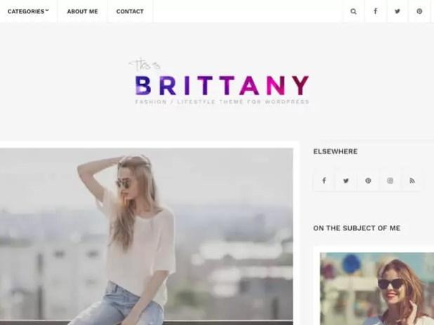 Brittany-premium blogging theme