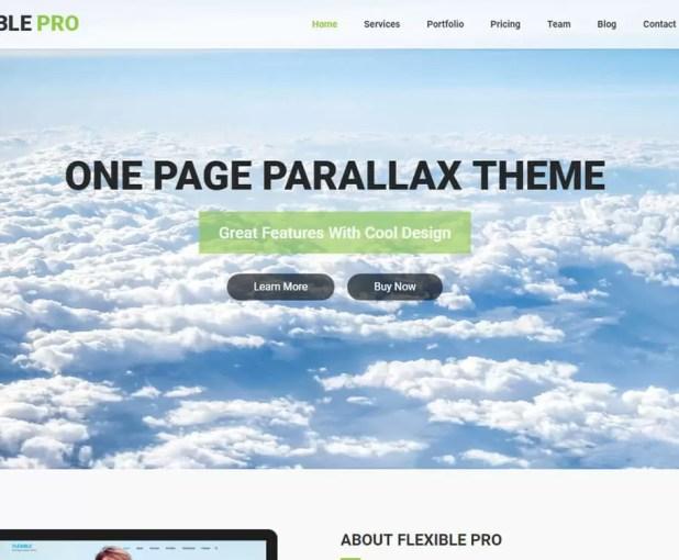 flexiblepro-Best Premium WordPress Business Themes