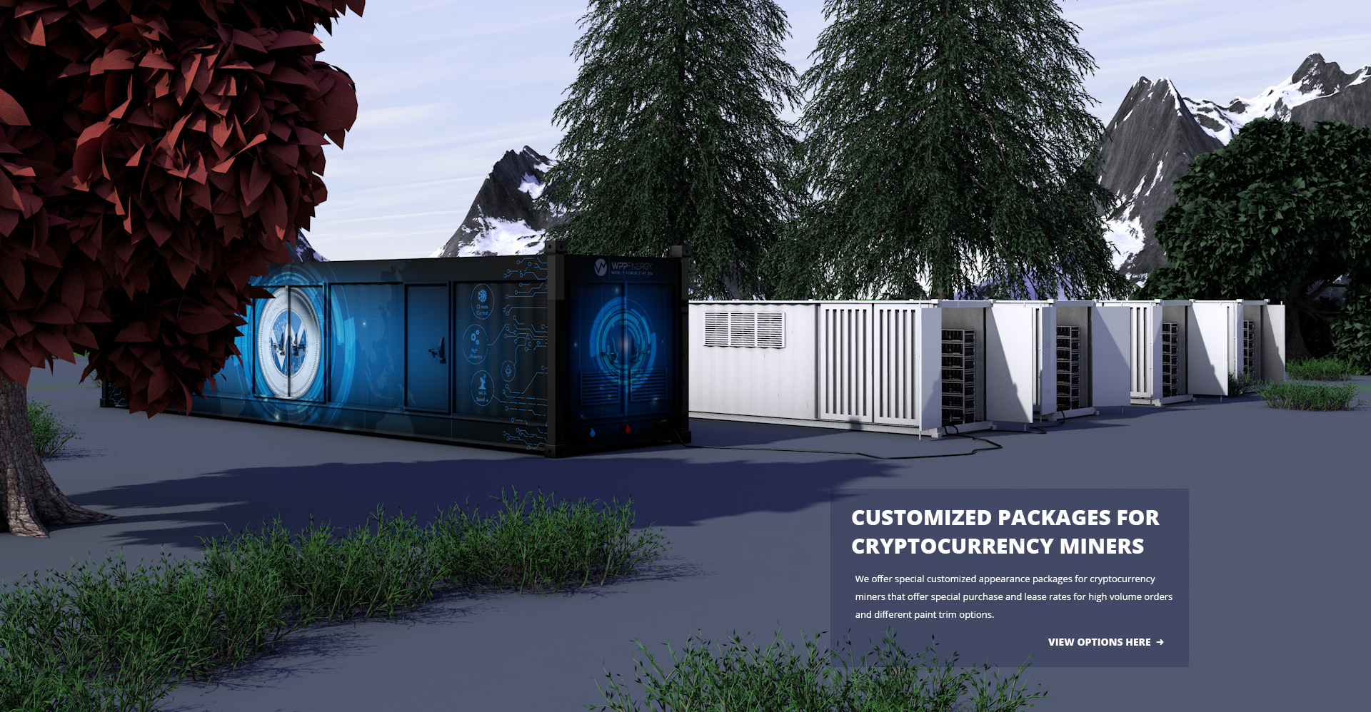CRYPTO_CONTAINER