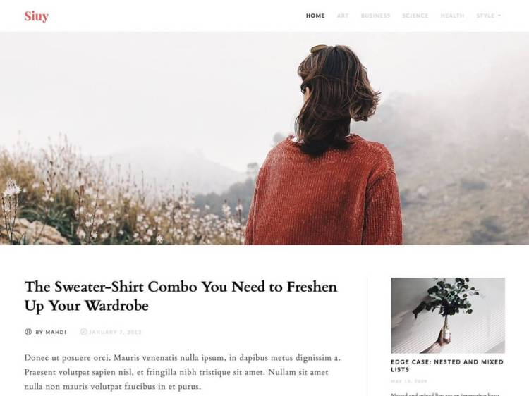 Siuy, Free WordPress themes