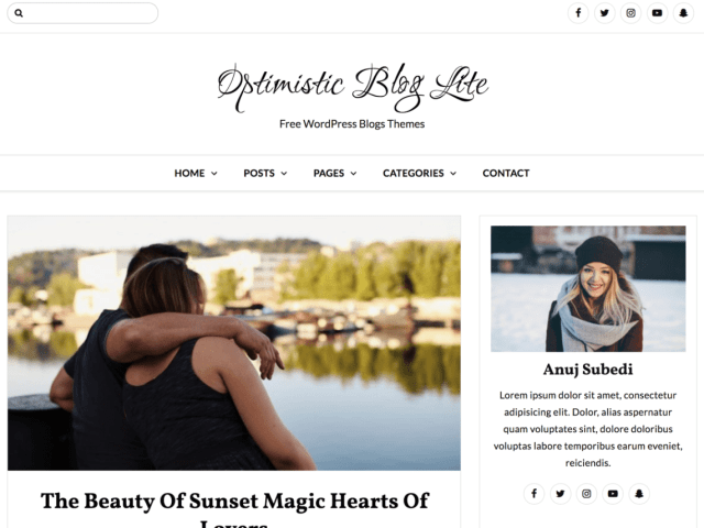 free WordPress blog themes,