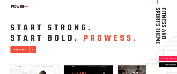 best gym and fitness premium WordPress theme