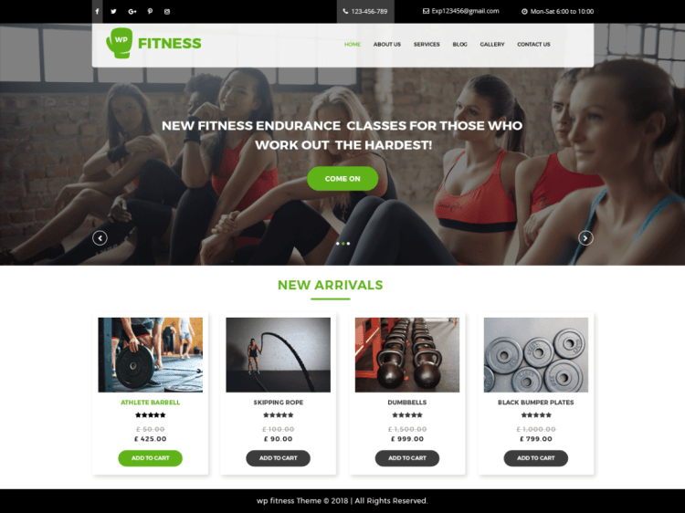 Core-Fitness-free-responsive-WordPress-theme-for-fitness-gyms-WPreviewteam