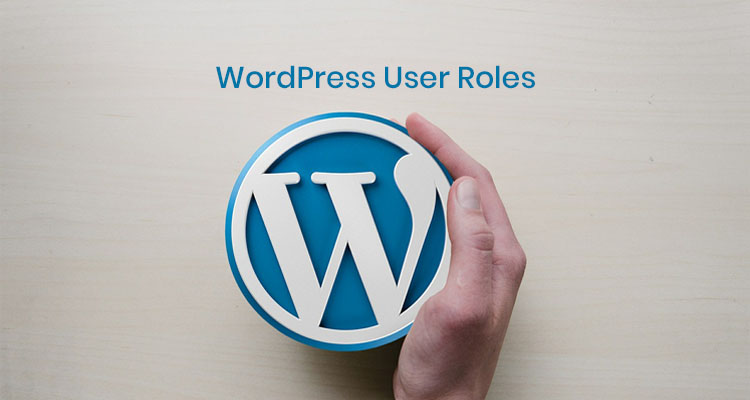 WordPress Users Roles-WPreviewteam