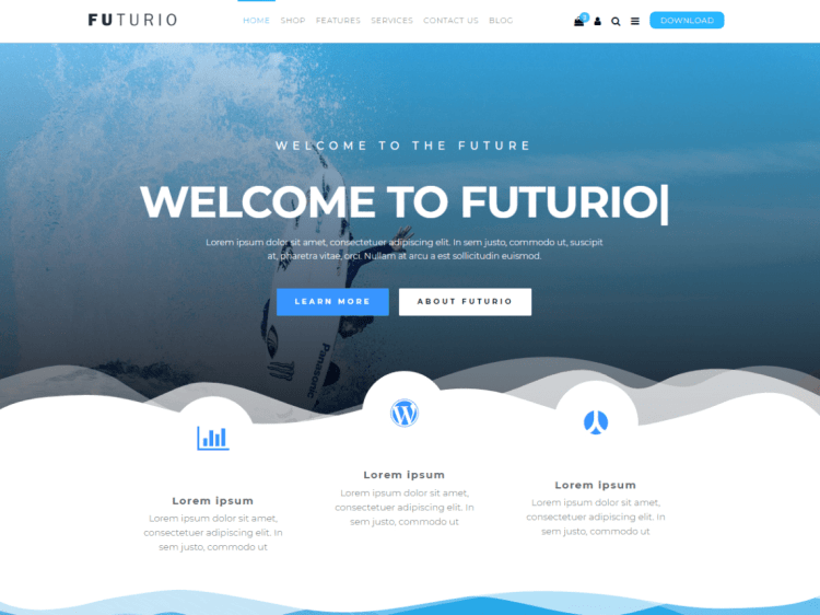 Futurio-WPreviewteam-responsive-best-blog