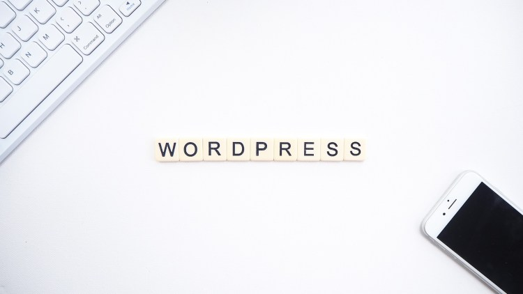 WordPress-use-of-it-WPreviewteam