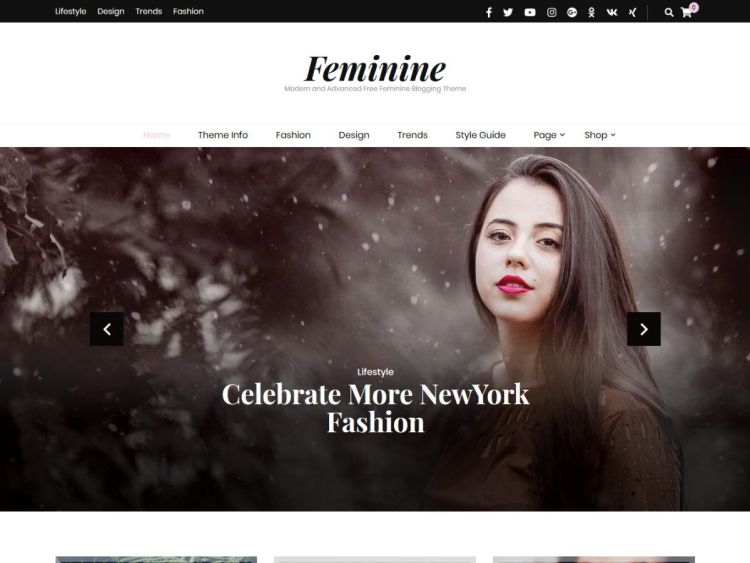 Blossom-Feminine-free-blogging-WordPress-Theme-WPreviewteam