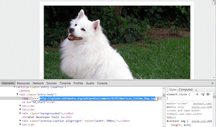 dynamic image loading with google developer tools