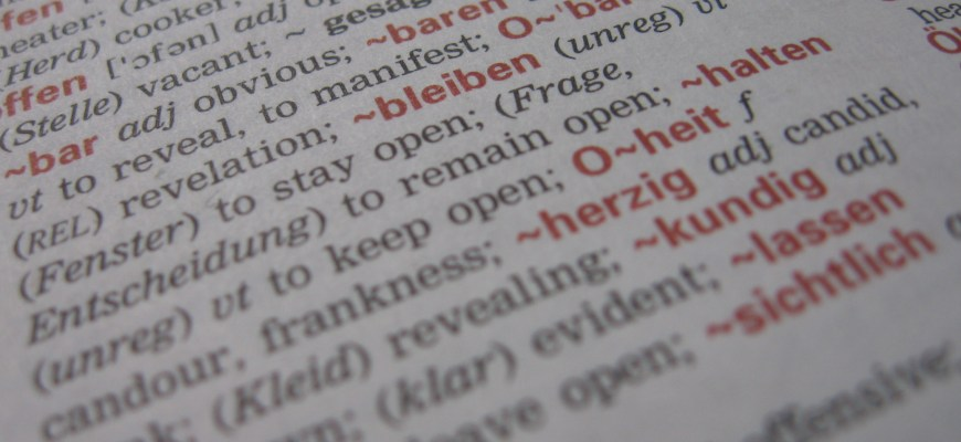 Dictionary | WordPress terminology
