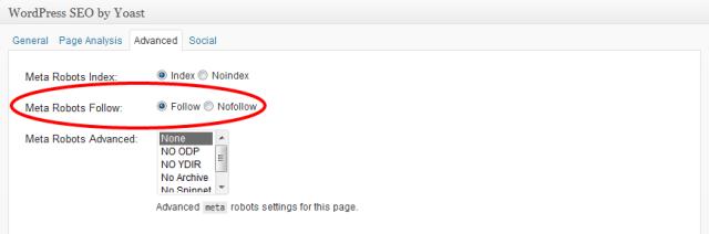 WordPress Seo Meta Robots No Follow Tag