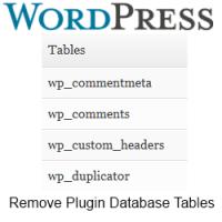 Delete Plugin Database Tables