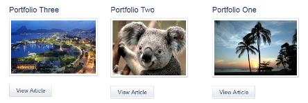 single portfolio
